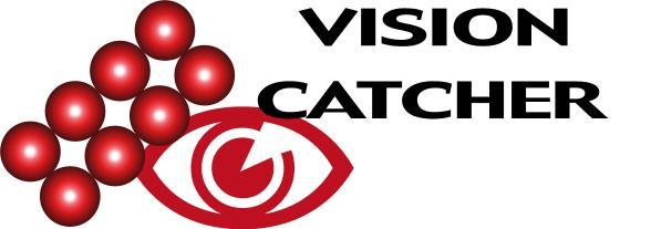 7th Dec 04 Vision Catcher Logo Balls and VC.jpg