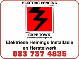 electric fencing venster-ELECTRIC25-3x1-DB250315-1115-tdeli-melss.jpg